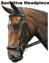 Sabre Cordoba Sensitive Stainless Steel Padded Drop Snaffle Comfort Bridle